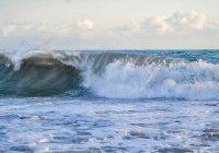 Пляжи Сочи закрыли из-за штормового предупреждения