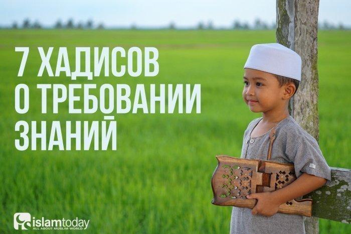 Воистину, знание постигается только посредством (усердного) изучения (Фото: shutterstock.com).
