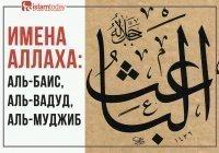 Имена Всевышнего: Аль-Баис, Аль-Вадуд, Аль-Муджиб