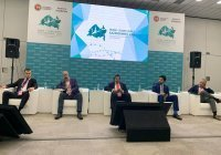 Топ-менеджеры финансовых организаций обсудили исламскую экономику в РФ и СНГ (Видео)