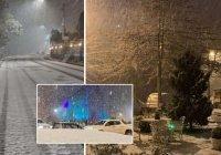В Бразилии выпал снег