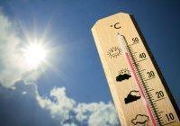 В Гидрометцентре назвали регионы, куда придет очень сильная жара