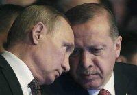 Путин и Эрдоган обсудили пожары в Турции