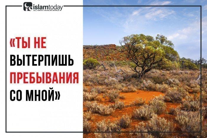 Таковы были слова Хизра (а.с.), адресованные Мусе (а.с.) (Фото: elements.envato.com).