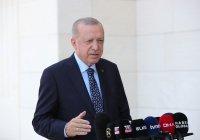 Эрдоган сравнил лесные пожары с международным терроризмом