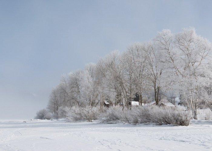 В 1701 году сибирские бухарцы были освобождены от налогов и сборов на землю, которую они купили (Фото: wikiway.com).