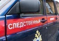 В Новосибирской области ребенок упал с велосипеда и умер