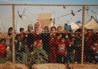 Школьники из Сирии посетят Россию по приглашению Шойгу