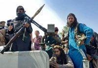 В МИД рассказали, при каком условии Россия исключит «Талибан» из списка террористов