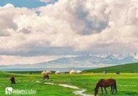 Освоение Казахских степей: первые русские города и мусульманские города-спутники
