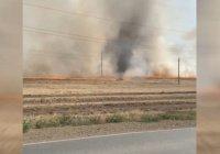 Огненный торнадо сняли на видео в Башкирии (+Видео)
