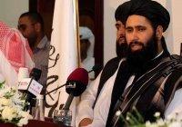 «Талибан» заявил, что примет новую конституцию Афганистана
