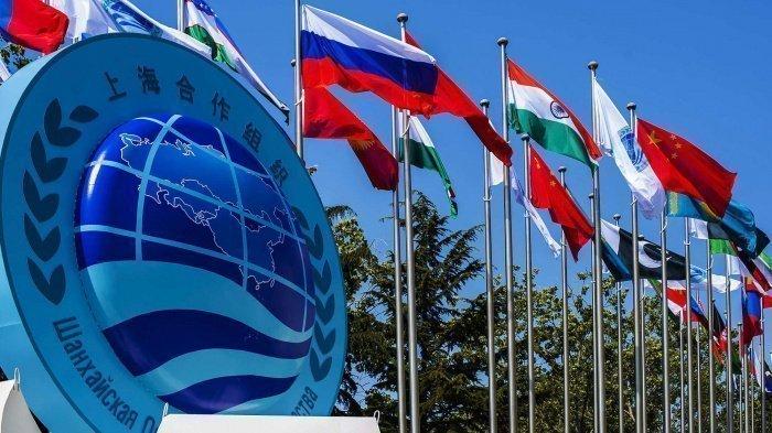 Фото: russian.cgtn.com.