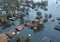 Климатолог назвал сроки глобальной катастрофы