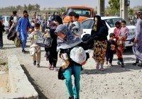В Кремле ответили на вопрос об особом статусе беженцев из Афганистана