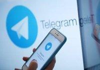 Правительство РФ создало официальный Telegram-канал