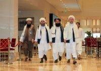 В Афганистане формируется новое правительство