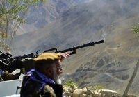 В боях за Панджшер погибли 350 талибов