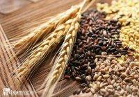 Будут ли сеять зерновые культуры в Раю?