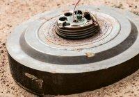 Талибы попросили помощи в обезвреживании мин