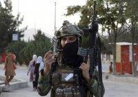 «Талибан» арестовывает боевиков ИГ