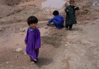 Афганистану грозит нехватка продовольствия