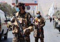 Инаугурации нового правительства Афганистана не состоялось