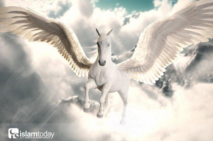 По поводу крылатых лошадей в Раю существуют достоверные хадисы.
