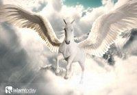 Крылатые лошади Рая: существуют ли они на самом деле?