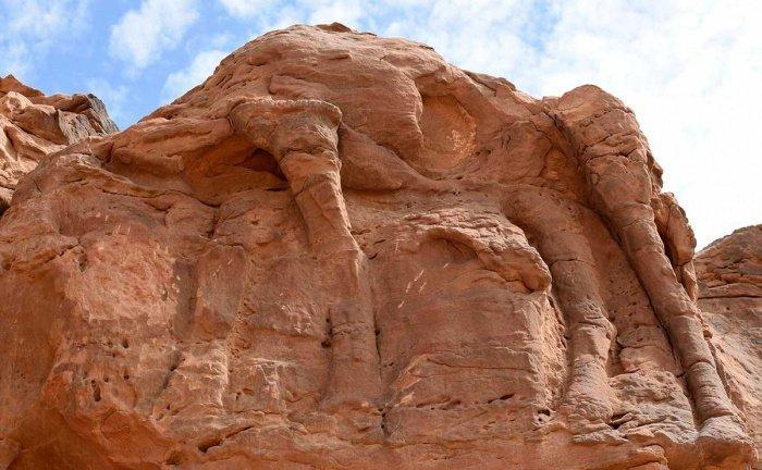 Фото: arabianbusiness.com.