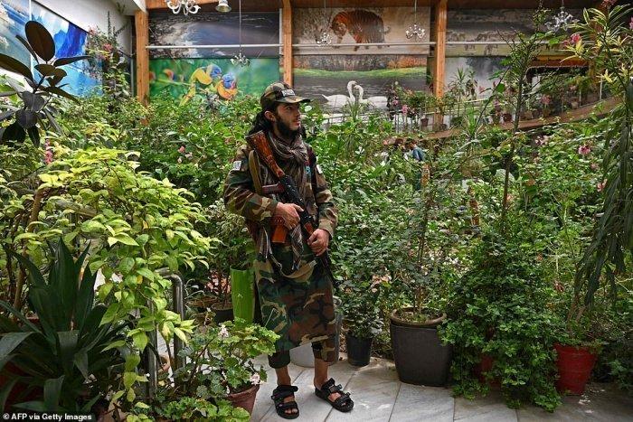 Талибы обосновались на вилле бывшего вице-президента Афганистана (Фото, видео)