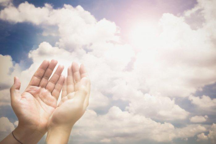 Когда настало утро, они уверовали в посланника Аллаха (с.а.с.).