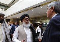 МИД раскрыл темы переговоров Кабулова с правительством талибов