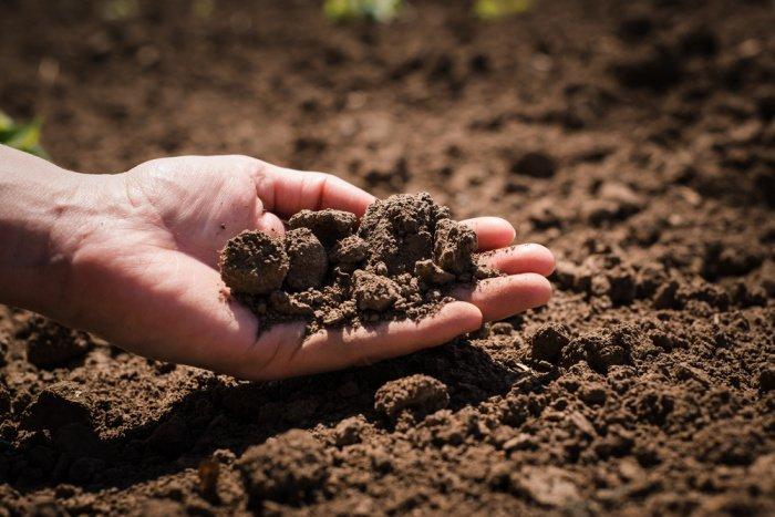 Земля благодаря своим химическим свойствам служит неким громоотводом.