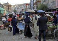 В ООН заявили об угрозе масштабного голода в Афганистане