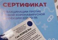 В Башкортостане запретили вход в театры без вакцинации от коронавируса