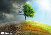 Чем грозит замена духовных ценностей материальными благами?