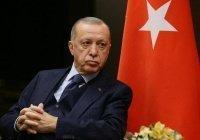 Эрдоган нашел «режиссера террористов» в администрации Байдена