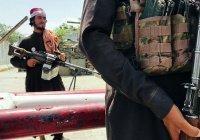 «Талибан» назвал ИГИЛ «не угрозой», а «головной болью»
