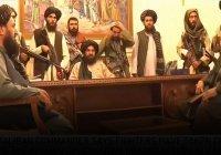 Талибы: время атак прошло, нужно идти путем дипломатии