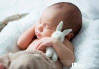 Будут ли в Раю рождаться дети?