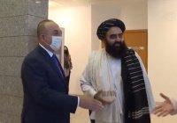 «Талибан» заявил, что вернул женщин в здравоохранение