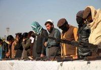 В МИД РФ усомнились в разрыве связей «Талибана» с «Аль-Каидой»