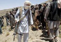 В Афганистане заработала комиссия по «чистке» рядов «Талибана»