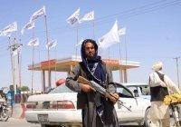 Представитель «Талибана» рассказал, чем будет заниматься «полиция нравов»