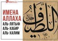 Имена Всевышнего: Аль-Лятыф, Аль-Хабир, Аль-Халим