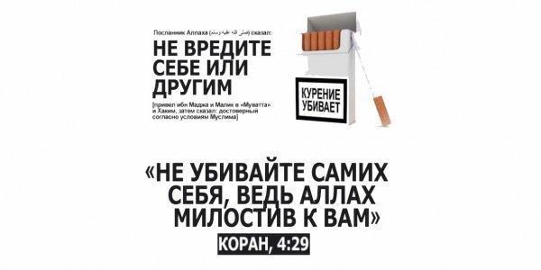Табакокурение - подробный разбор вопроса и взгляд на него через призму Ислама