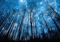 В чем смысл хадиса – «Поистине, через сто лет после этой ночи не останется на земле ни одной живой души!»