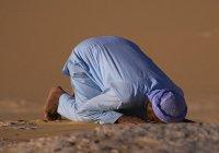 Можно ли молиться за наших родных-немусульман?