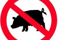 Почему следует остерегаться недозволенного в пище?